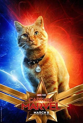 Affiche de Goose dans Captain Marvel avec Reggie